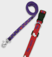 Dog Collar & Leashes